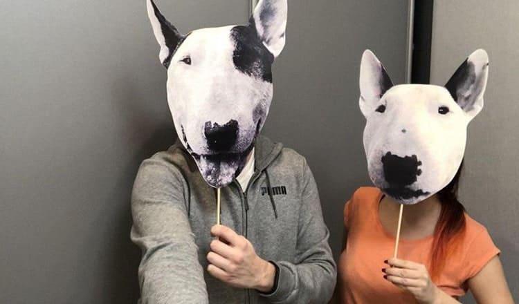 Pet Face Cutouts
