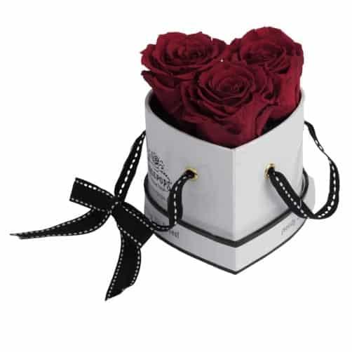 Romantic Preserved Roses
