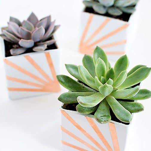 diy anniversary gift: Copper Anniversary Succulent Planters