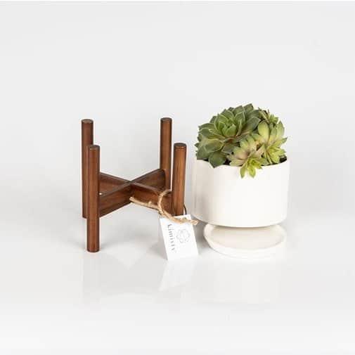 Mid Century Ceramic Succulent Planter